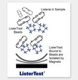 ListerTest