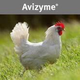 Avizyme®