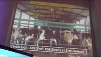 Instalaciones en Bienestar animal. Jorge Ghiano