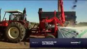 Ipesa Silo - Silo bolsa para agricultura