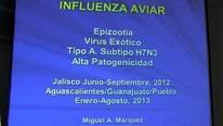 Influenza Aviar de alta patogenicidad en Mexico