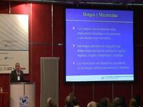 micotoxinas en alimentos de origen avícola Huevos y Pollos: Douglas Zaviezo (Special Nutrients)