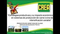Estrategias Productivas y su Impacto Economico. Ignacio Buffa
