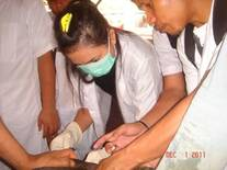Students practicals castration