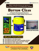 BOTTOM CLEAN FOR IMPROVEMENT POND BOTTOM IN  VANNAMEI SHRIMP CULTURE-IHCL, PVS GROUP