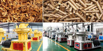 China Straw Pellet Mill/Large Straw Pellet Machine/Straw Pellet Mill