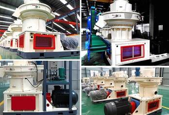 Distance Adjustment for FTM Wood Pellet Machine
