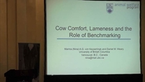 Von Keyserlingk talks about cow comfort, lameness and the role of benchmarking