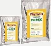 PHYTOCEE™ Powder