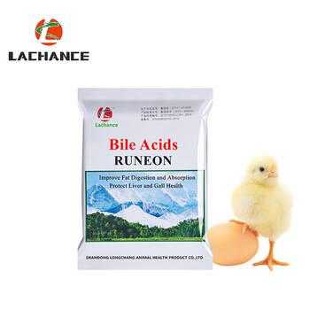Runeon - Ácido biliar para gallinas ponedoras