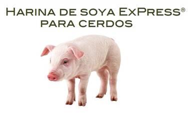 Harina de soya ExPress® para Cerdos