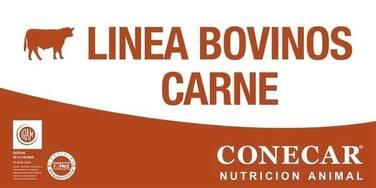 1-22 Preiniciador Ternero (Línea Cabañas Bovinos Carne)