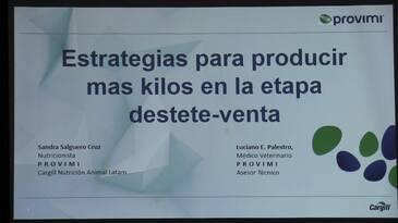 Cerdos: Estrategias para producir mas kilos en la etapa destete-venta