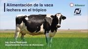 Alimentación de la vaca lechera en el trópico