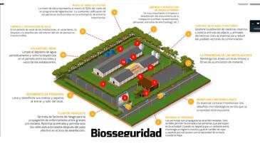 Limpieza y desinfección de granjas: como proteger los lotes