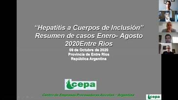 Hepatitis a cuerpo de inclusión, Resumen de casos