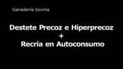 Destete Precoz e Hiperprecoz + Recría en Autoconsumo