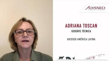 Estrategia nutricional para reducir los costos del alimento balanceado, Adriana Toscan