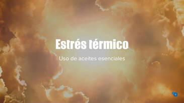 Estrés térmico: Uso de aceites esenciales