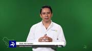 Micotoxinas: cómo evitar sus efectos negativos