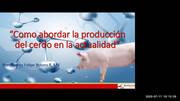 Cómo abordar la producción del cerdo en la actualidad