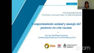 Comportamiento animal y manejo del pastoreo en cria vacuna