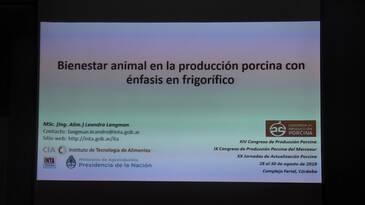 Bienestar en producción porcina con énfasis en frigorífico