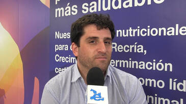 Mejorar el desempeño reproductivo de los cerdos, Luciano Palestro