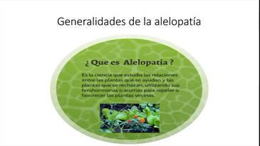 Alelopatia, la defensa de las plantas