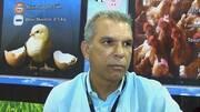 Lesiones asociadas con micotoxinas en mataderos avícolas