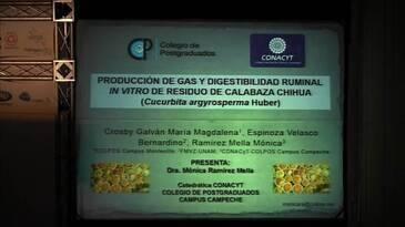 Producción de gas y digestibilidad ruminal in vitro de residuo de calabaza chihua