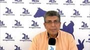 Pienso complementario para cerdos y aves: Ruben Rivera presenta Novyrate®