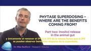 Video 1: Superdosis de Fitasa, ¿De dónde vienen los beneficios? Liberación de inositol en el intestino
