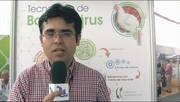 Tecnología de Baculovirus para aplicar en aves