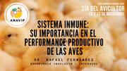 Sistema Inmune de las aves: Importancia en el perfomance productivo