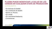 Plasma puede beneficiar la salud de los cerdos en cualquier etapa de producción, Luis Rangel
