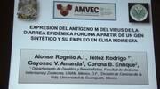 Diarrea Epidémica Porcina, Rodrigo Tellez en AMVEC 2015