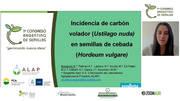 Carbón Volador en Cebada: Natali Lazzaro en ALAP 2020