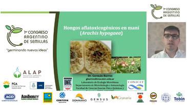 Hongos aflatoxicogénicos en maní: German Barros