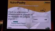Tecnología e infraestructura de galpones en pollos de engorde