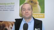 Aves: Respuesta inmune más eficaz con plasma