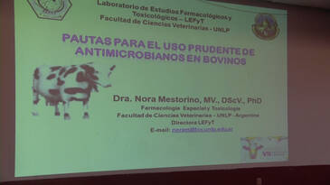 Pautas para el uso prudente de los antimicrobianos