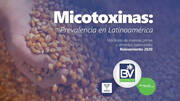 Prevalencia de las micotoxinas en Latinoamérica 2020