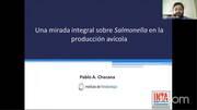 Salmonella en la Produccion Avicola: Una Mirada Integral