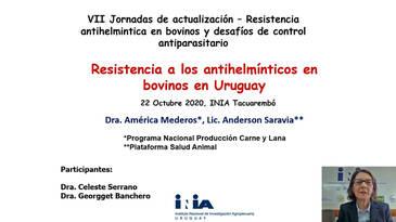 Resistencia antihelmíntica en bovinos para carne y leche en Uruguay