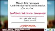 Uruguay: Manejo de la resistencia antihelmíntica en bovinos en predios comerciales