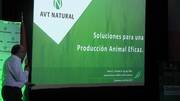Fitogénicos: Soluciones para una producción animal eficaz