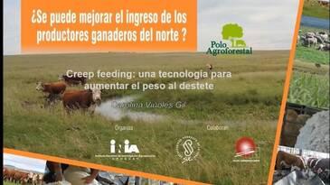 Creep Feeding: tecnología para aumentar el peso al destete