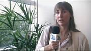 Producción de embriones in vitro. Cintia Gutnisky