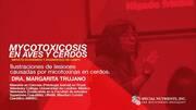 Identificación de lesiones causadas por micotoxinas en porcinos, Dra. Margarita Trujano